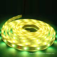 Wasserdichte gelbe LED Streifen rgb 5050 CE ROHS flexible LED Streifen