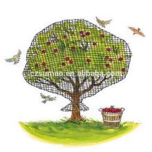 Agriculture unique adaptée aux besoins du client a employé le filet de brume d'oiseau
