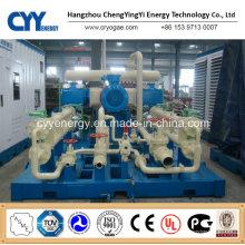 Skid-montierte Lcng LNG CNG-Kombitankstelle