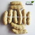 Erdnussproduktion, Erdnussmehl / hochwertige Erdnuss-Muscheln
