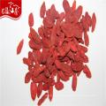 2017 new crop wholesale dried goji berry fruit