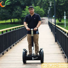 Wholesales Li-ion Battery Electric Scooter for Kids