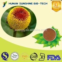 natürliche Pflanze Spilanthol PE / Spilanthol Pulver für analgetische Spray mit guter Qualität