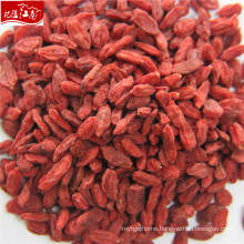 2017 new wholesale variety berries goji