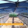 Desenho de Design de casa de exploração avícola para camadas na fazenda do Quênia