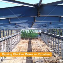 Dessin de conception de maison de ferme de volaille pour des couches dans la ferme du Kenya