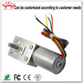 Bldc Worm Dc Gear Motor For Lock