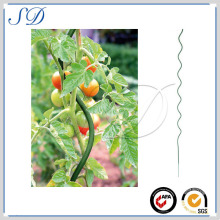 spiral tomato stake on hot sale