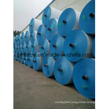 China Blue PE Tarpaulin Roll, Finished High Quality Tarpaulin for Covering