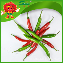 Fresh Cherry Peppers RED/GREEN Chilli Peppers