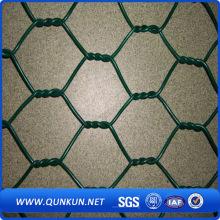 PVC revestido Hexagonal Wire Mesh para frango (YB-20)