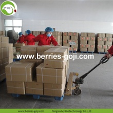 Factory Supply Fruits Bulk Dry Goji Berry