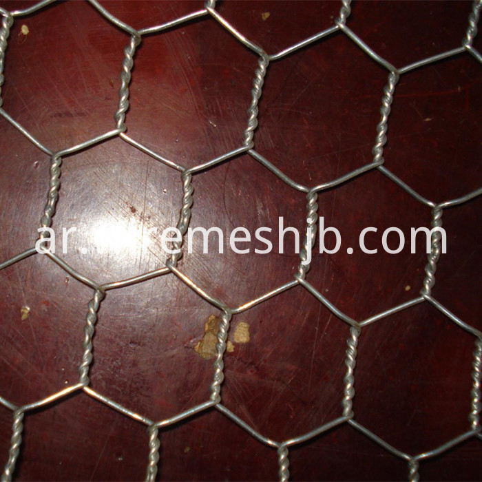 Hot Galvanized Chicken Mesh