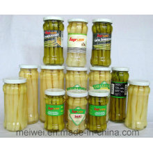 Vegetable Canned Food Canned Asparagus From China