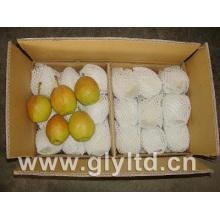 Frische neue Ernte-wohlriechende Birne