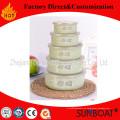 Tazón de fuente de mezcla de esmalte tradicional