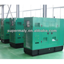 China yangdong 24kw Diesel-Generator