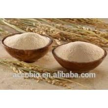 Extrato natural do farelo de arroz do ácido de Ferulic de 100% para cuidados com a pele