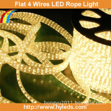 Flat LED Rope Light/ LED Ribbon / LED Tape (5 wires)