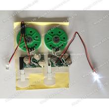 Module vocal à LED, puce audio à languette coulissante, puce vocale à préenregistrement LED