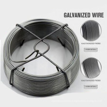 Professional 6X7 Steel Wire Rope with High Quality