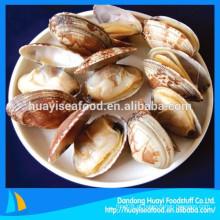 Congelado cozido curto necked clam popular pronto para comer frutos do mar