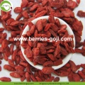 Factory Supply New harvest Dried Goji Berries