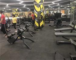 Exercise Equipment for Gym