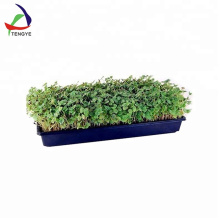 Plant plastic hydroponic trays for seedling germination fodder seed plant growing