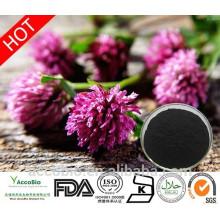 Polvo orgánico certificado alta calidad natural del extracto del trébol rojo de la alta calidad 100%