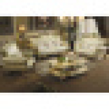 Ensemble de meubles de salon avec ensemble de sofa en cuir bois (533)