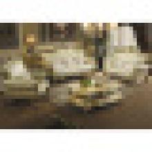 Комплект мебели живущей комнаты с деревянными кожаными диванами (533)