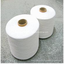 Fil chaud de vente de polyester de la Chine pour des chaussettes
