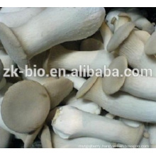 High purity organic Enhance immunity coprinus comatus powder