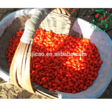 Сушеные ягоды годжи, органические ягоды годжи,