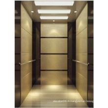 Ascenseur d'ascenseur de passager miroir de haute qualité gravé Aksen Ty-K140