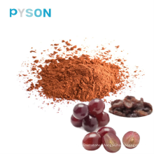 Natural Antioxidants Grape seed extract OPC 95%