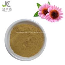 extracto de equinácea angustifolia 2% 4% polvo quórico