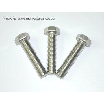 Нержавеющая сталь/углеродистая сталь шестигранные болты и гайки оцинкованная оцинкованная шестигранная Гайка и Болт (DIN933 и DIN934)