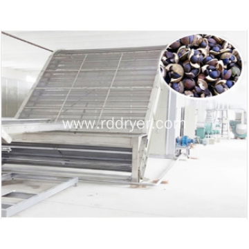 Tea oil fruit tea seed drying machine equipment drying production line - clean energy drying equipment.