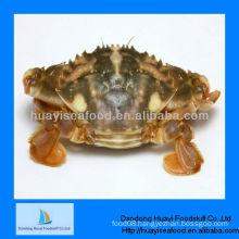 Dandong Huayi frozen live mud crab