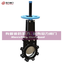 ANSI16.5 Mss Sp81 Lug Knife Gate Valve