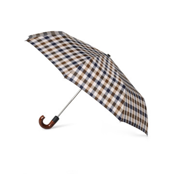 Check Printing 2-Folding Umbrella (BD-13)