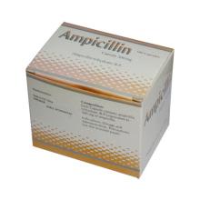 Ampicillin Antibiotic Capsules