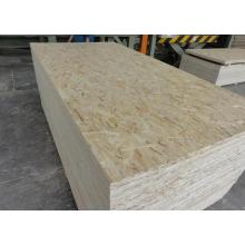 Oriented Structural Board OSB for Construction