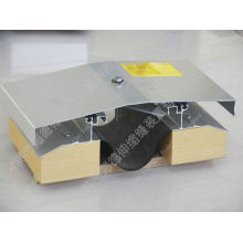 Ceiling Expansion Joint with Roof Expansion Joint