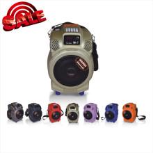Hot Sale Speaker Loudspeaker with USB/SD Card (Q6F)