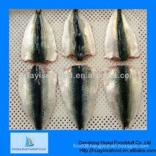 frozen mackerel fillets