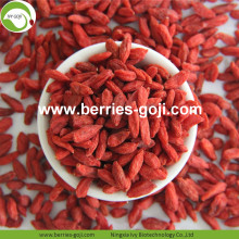 Best Qualtiy Hot Sale Kering Goji Tibet