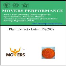 Extrait végétal organique --- Luteine 5% / 20%